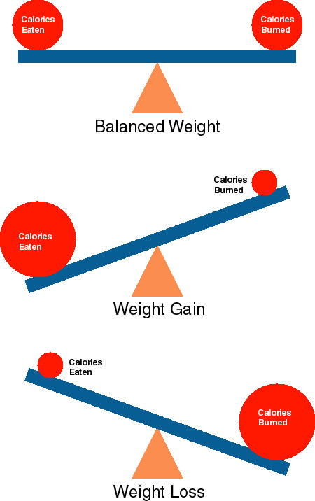 """Flexible Dieting / IIFYM (Part 2) – """"What is a Calorie?"""""""